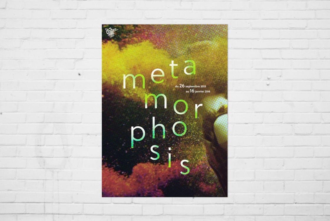 metamorphosis1
